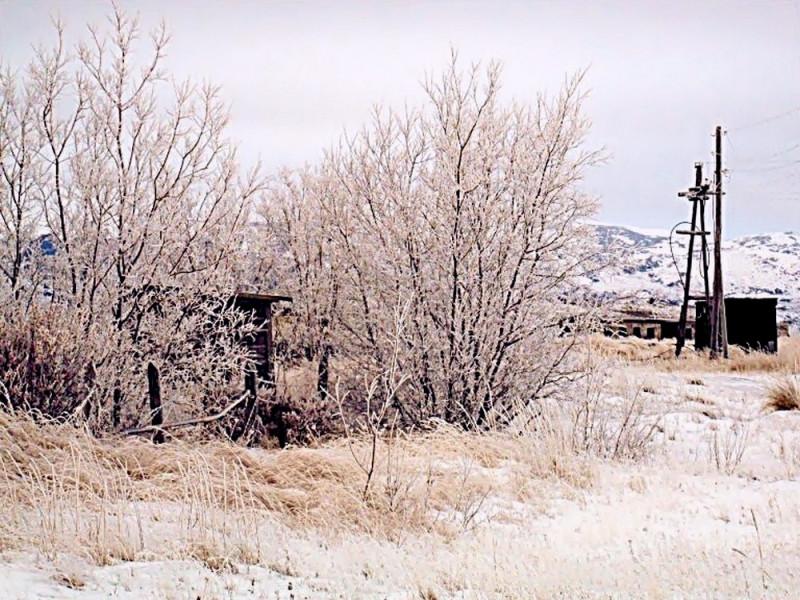 Пахачи зима 2010 аэропорт деревья иней Камчатка