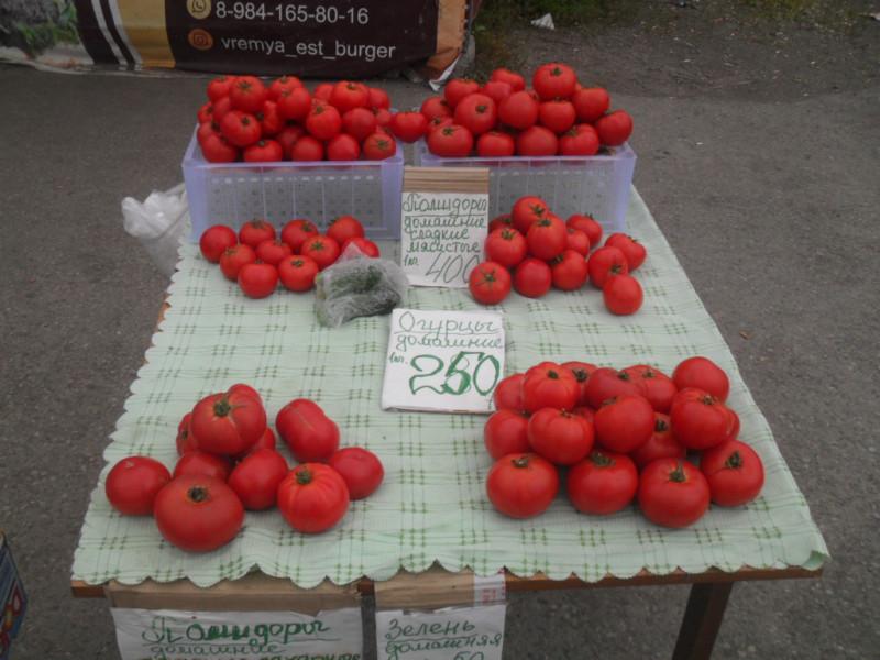 Камчатка Термальный помидоры
