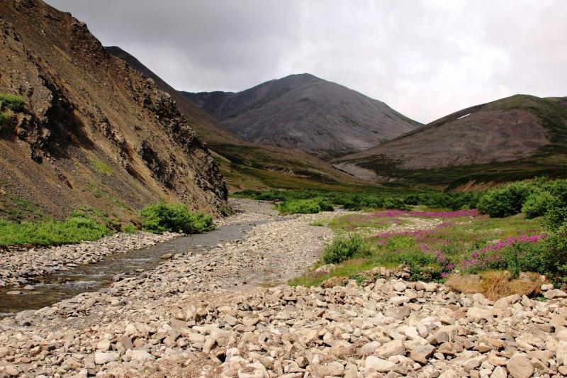 Чукотка сопки горный ручей