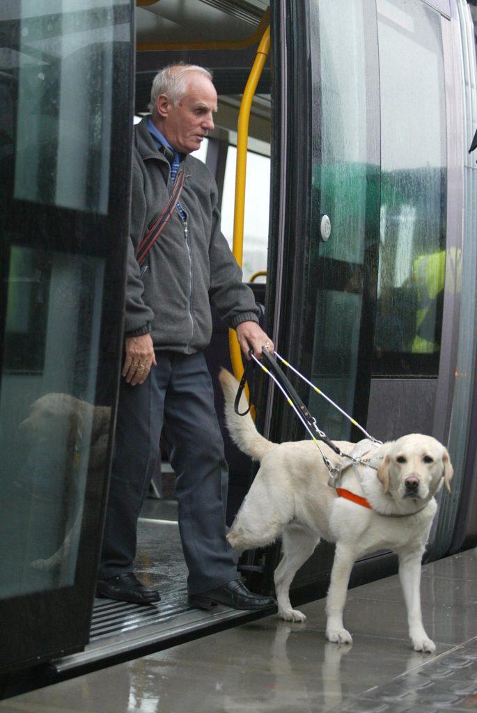 слепой с собакой поводырем