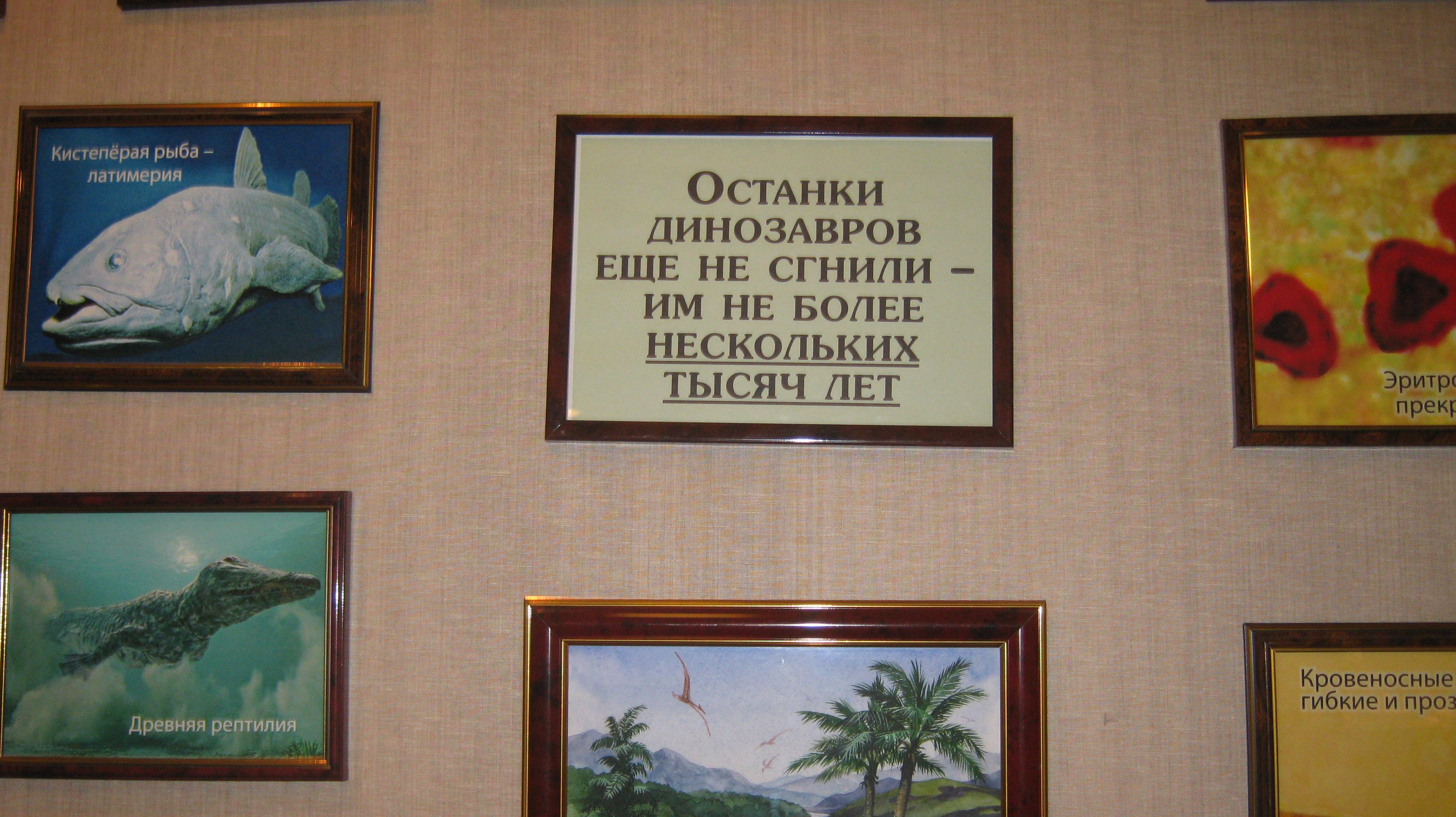 досье максима калашникова-6