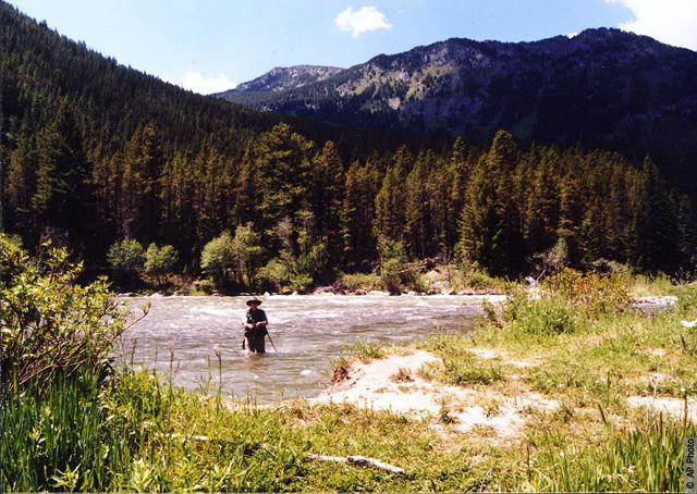 Gallatin river. AP Photo