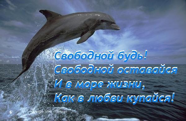 jetot_manjashhijj_podvodnyjj_mir_____16_foto_4[1][1]