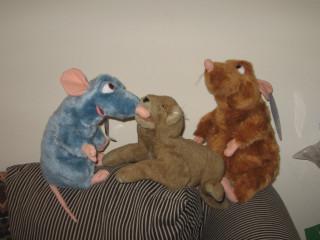 Remy, Nardo, Emile