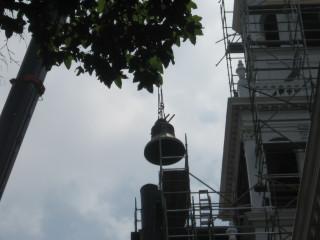 Lenten Bell Photo #1
