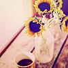stock_flowers5