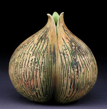 onion_15.09
