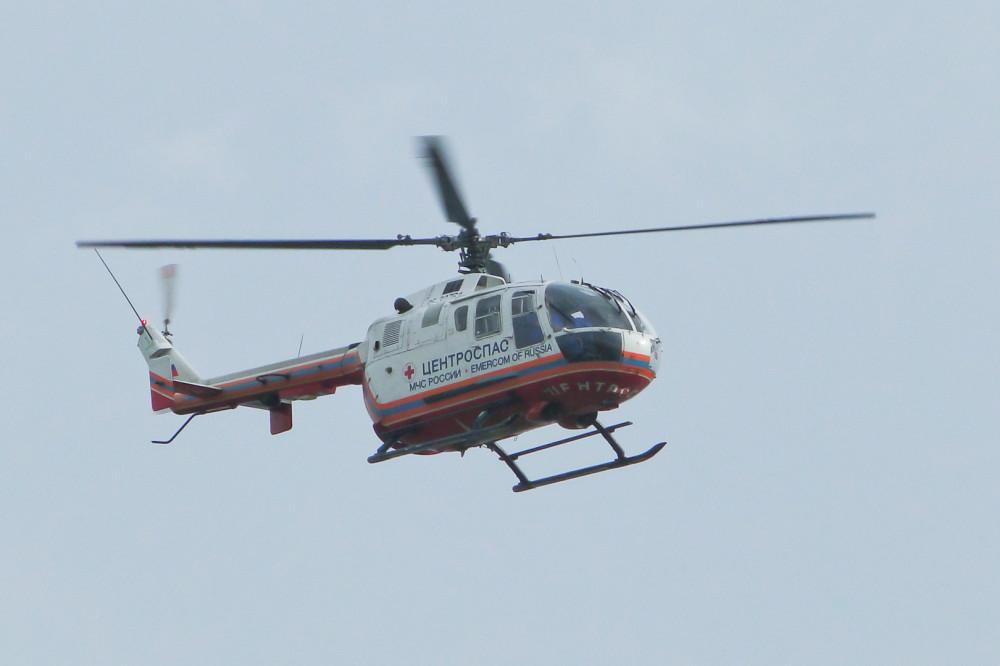 приятен средний минога морской вертолет фото кошачьих