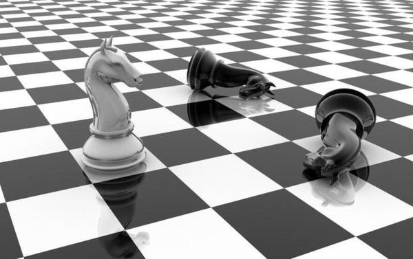 шахматы конь.jpg