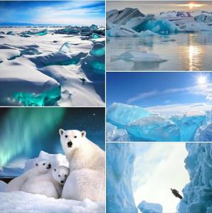 фото-арктика.jpg