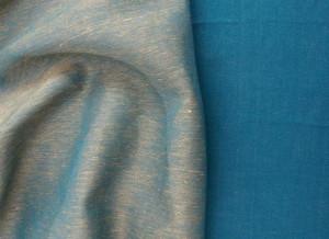 agava1.jpg