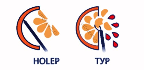 HOLEP-ТУР1