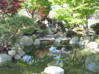 Japanese Garden, not to be confused with the Japanese Tea Garden