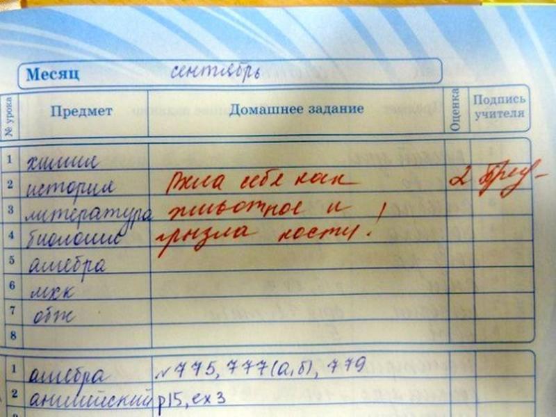 25-zabavnyh-zapisej-v-dnevnikah-uchenikov_a38a6ac128b2f3ac4d71fe65c4c7d356[1]