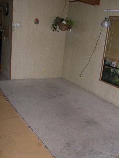 Last of the Carpet