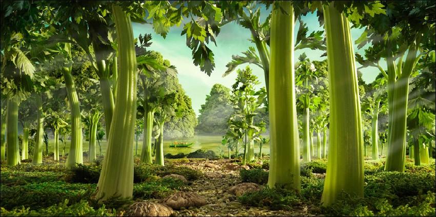 1378389759_food-landscapes017