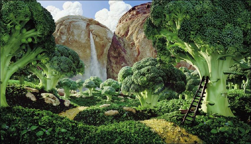 1378389763_food-landscapes019