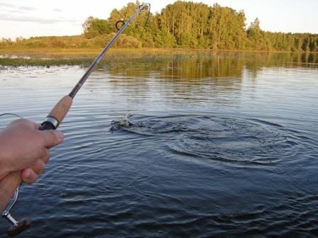 рыбная ловля