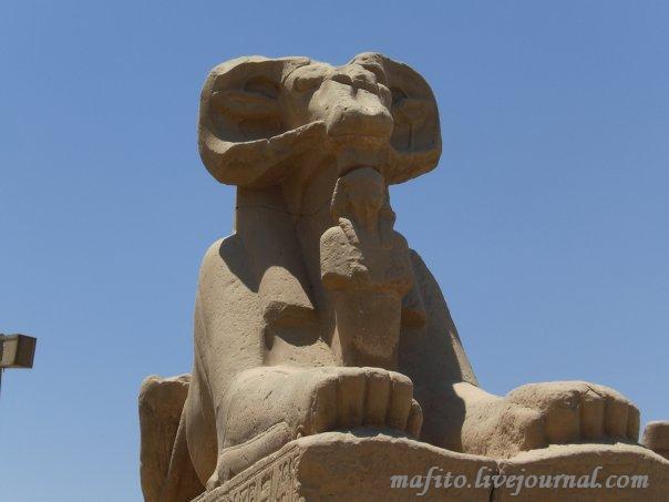 Египет алея баранов