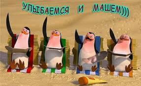 пингвины (3)