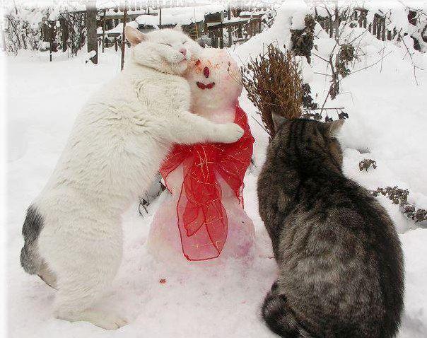 Снеговик, ты такой офигенный