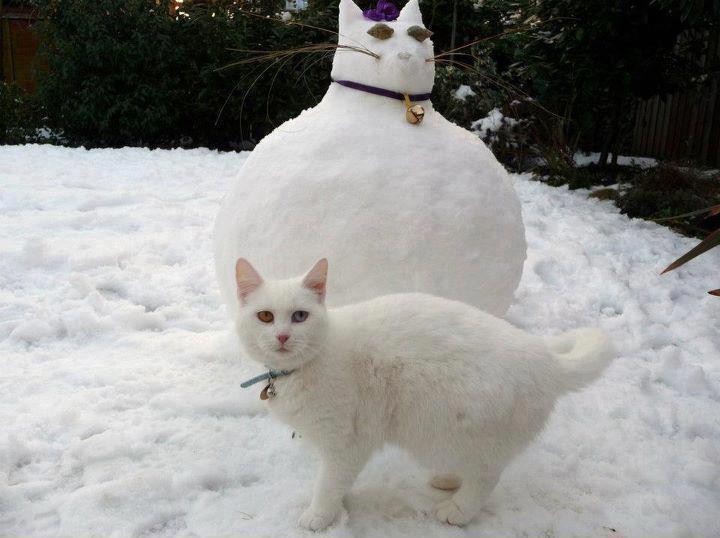 Снеговик, ты такой офигенный 1