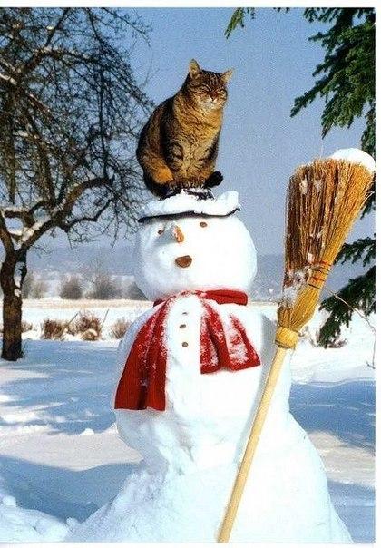 Снеговик, ты такой офигенный 3