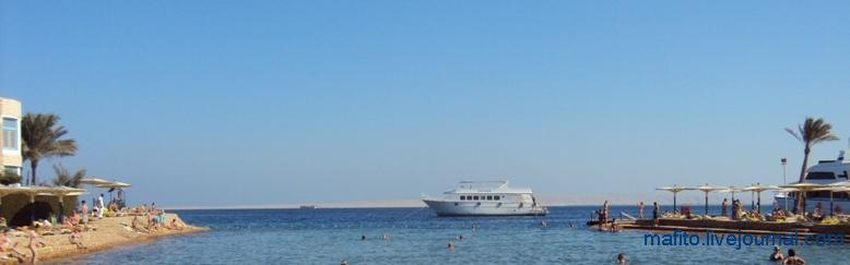 отель Sea Gull Хургада, Египет (1)