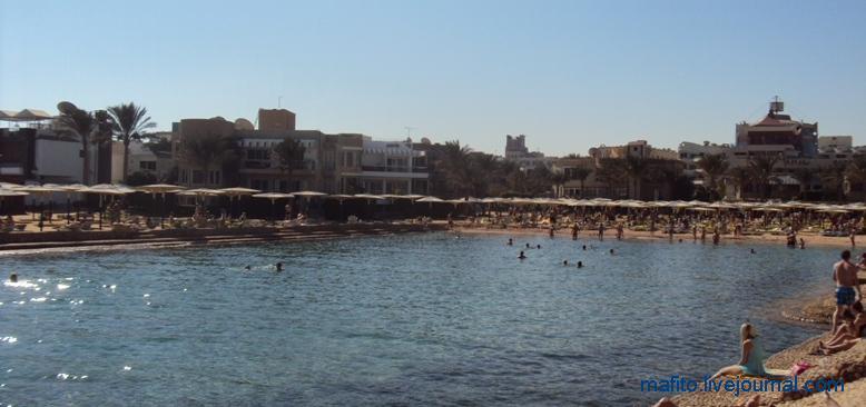 отель Sea Gull Хургада, Египет (7)