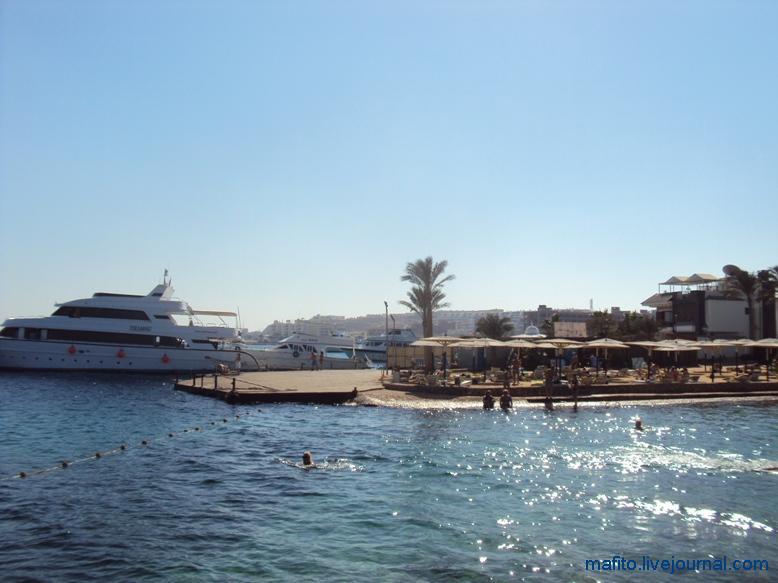 отель Sea Gull Хургада, Египет (8)
