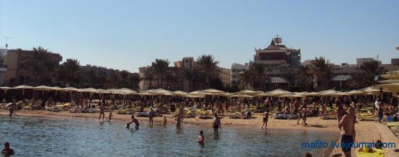 отель Sea Gull Хургада, Египет (9)