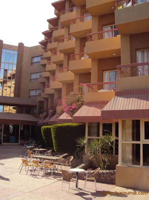 отель Sea Gull Хургада, Египет (10)