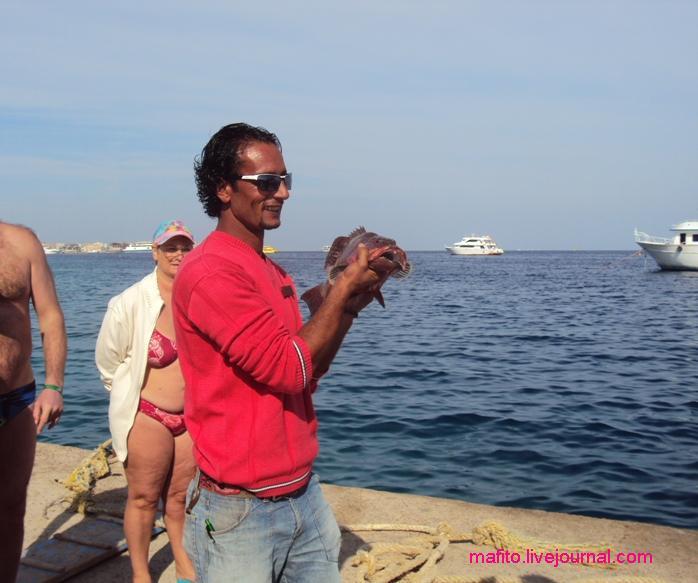 рыбалка Хургада (1)