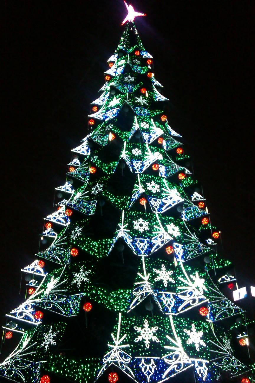 Фото новогодняя елка 2010 2