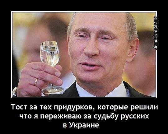 _TV9DGzs8fg
