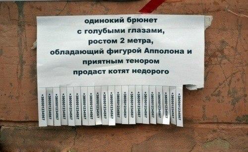 Доска частных объявления о сдаче комнат от собственника
