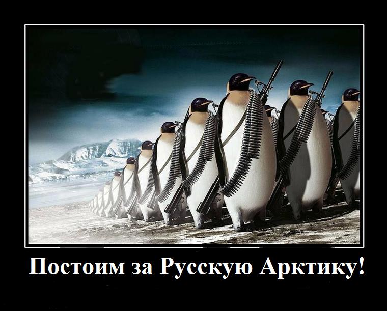 Российская Арктика под крылом Шойгу! 854_900