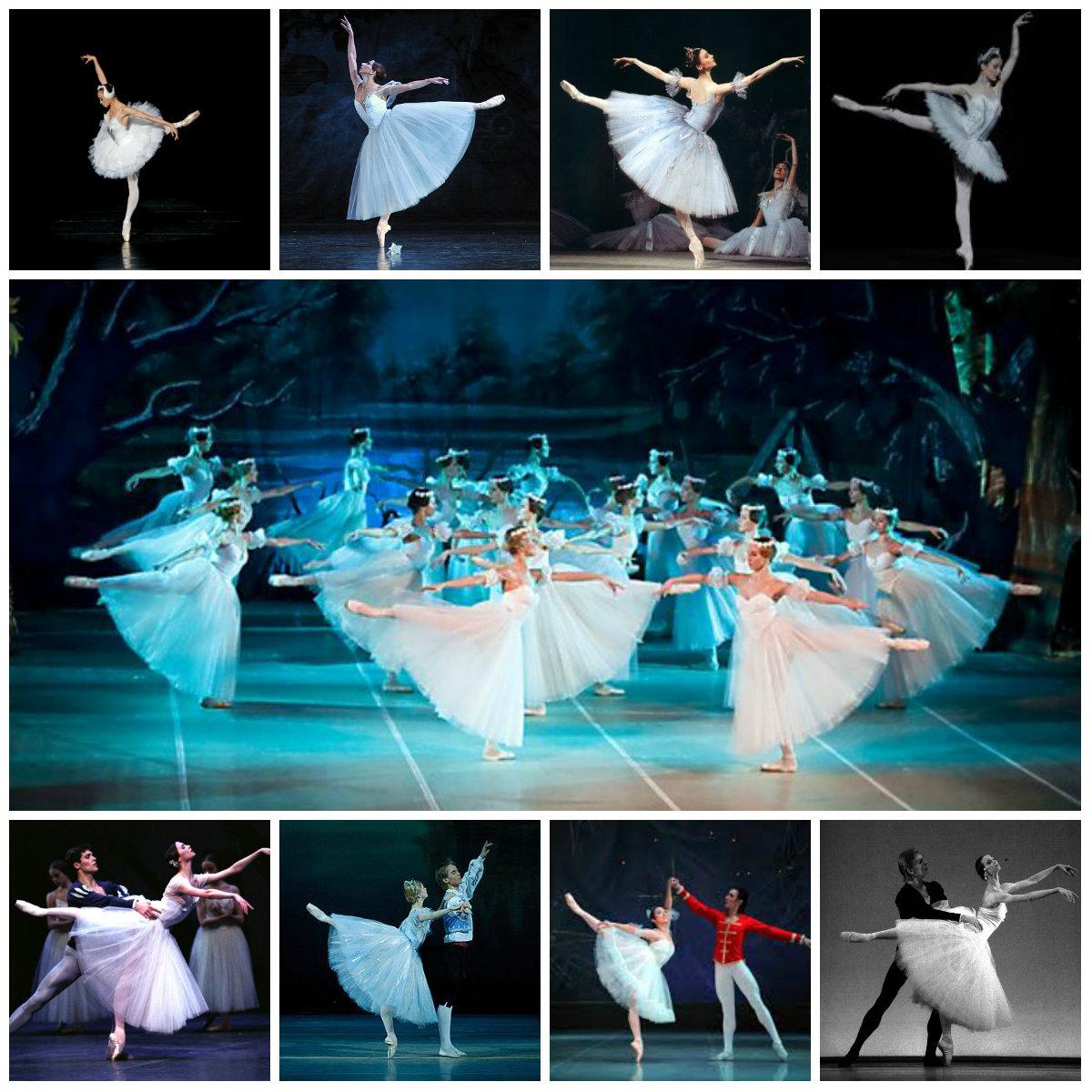 балет классический птицы коллаж