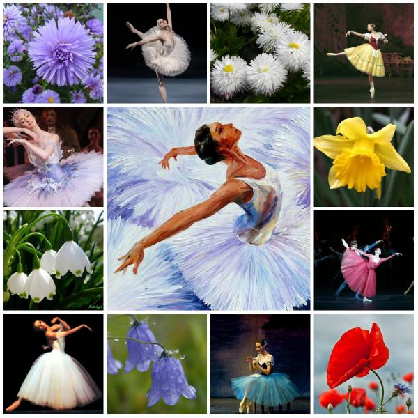балет цветы коллаж