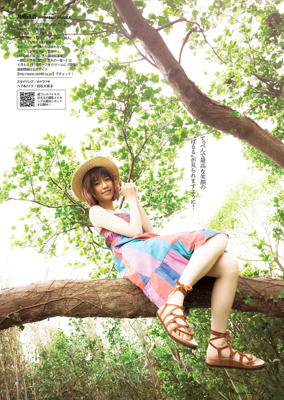 HShimazaki WPB 150615 06.jpg