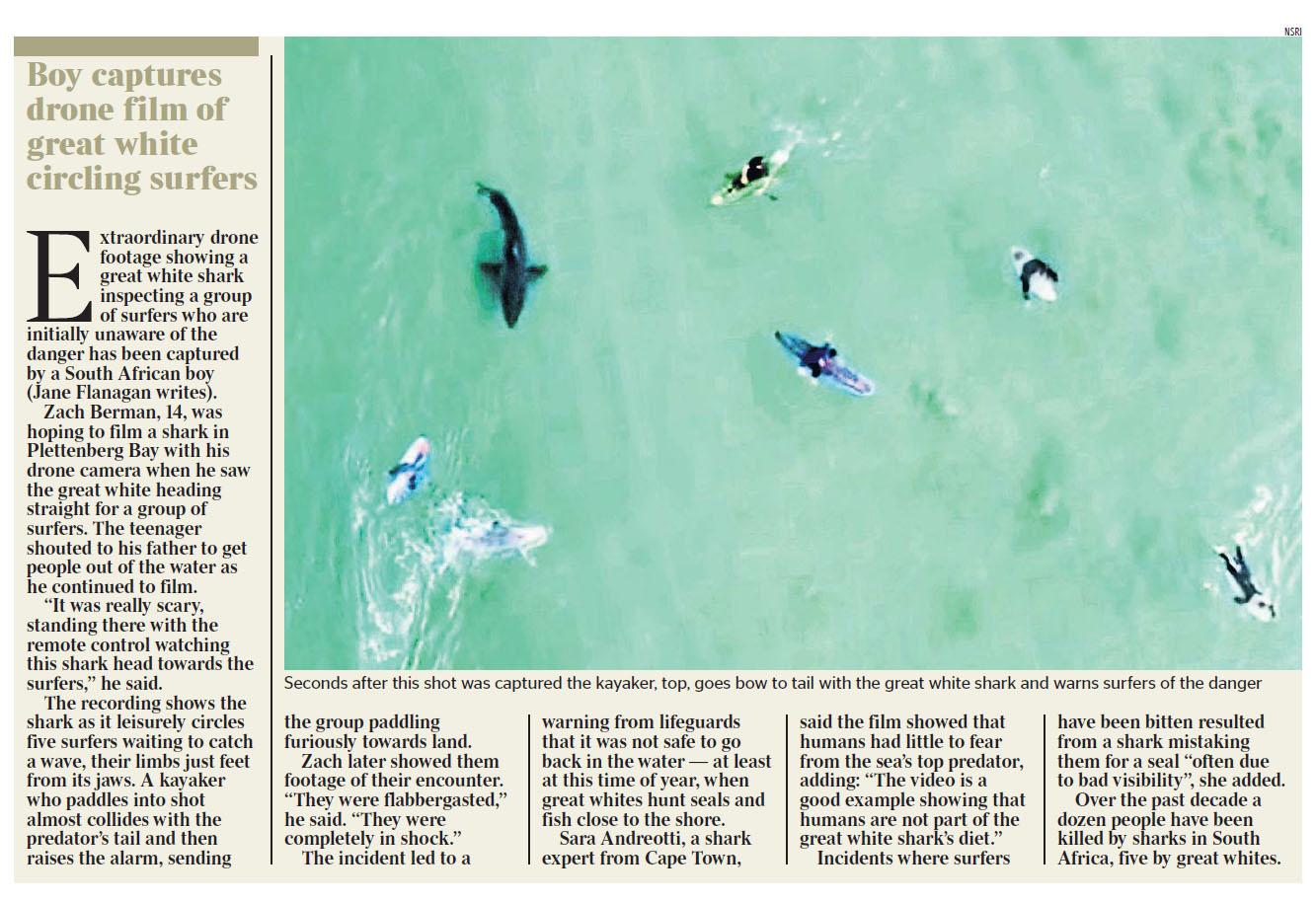 Times 200625 Shark.jpg