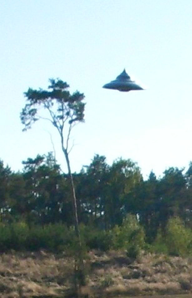 UFO_Woods_Poland_01.jpg