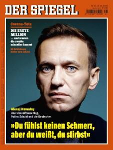 Spiegel 201002.jpg