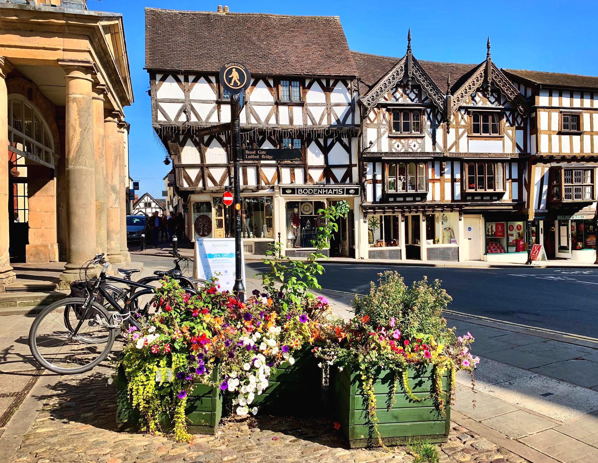 Ludlow, Shropshire by Nigel Harris.jpg