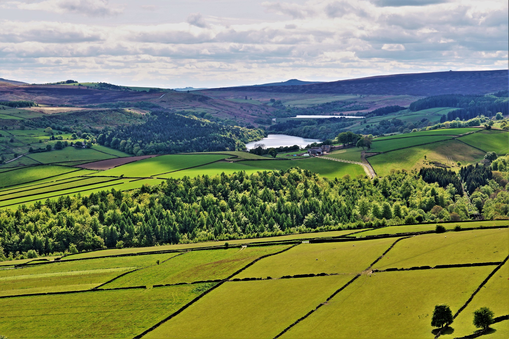 Dale Dike and Strines Reservoirs, High Bradfield by Martin Elliss.jpg