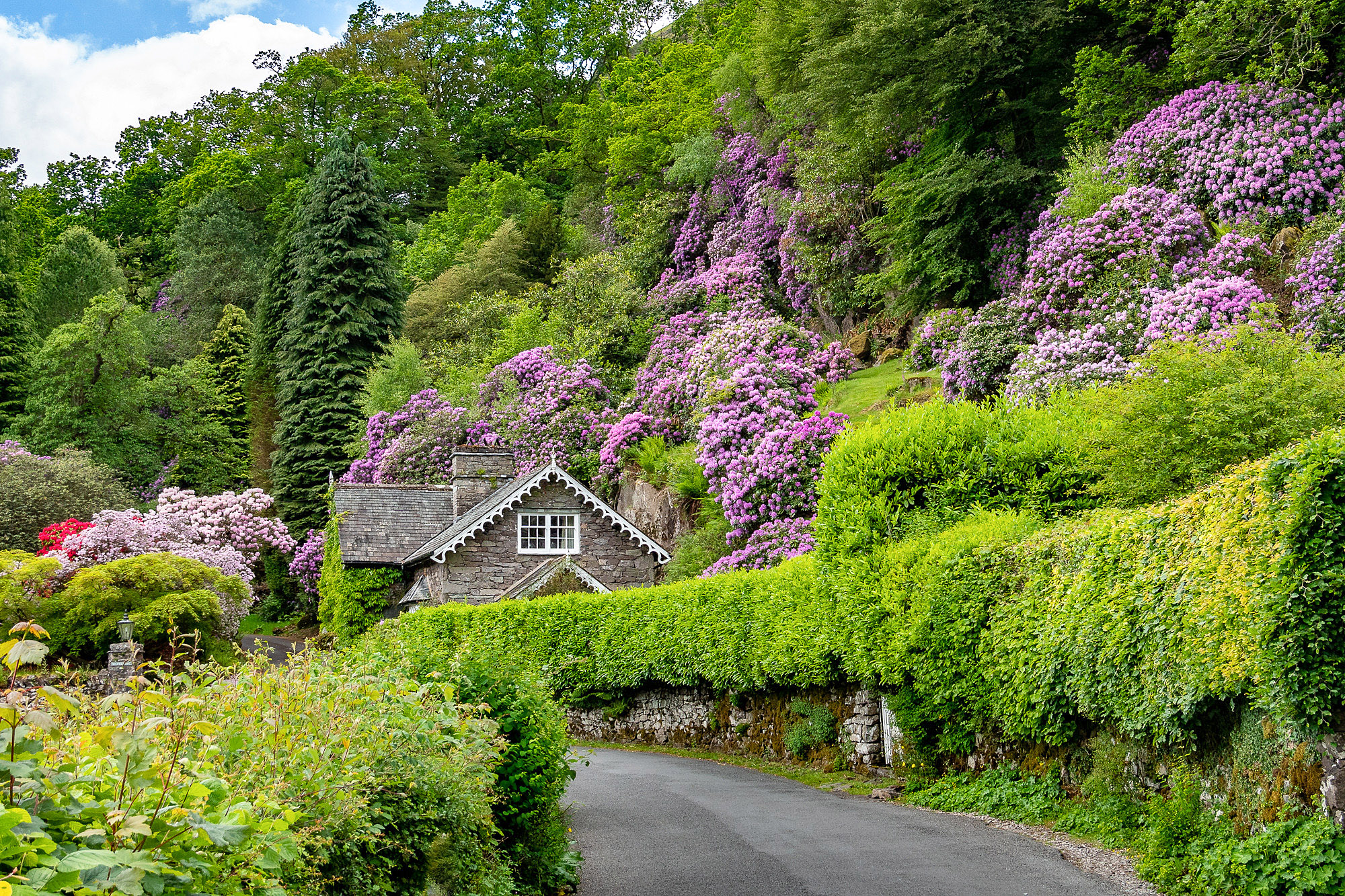 Grasmere, Lake District by Bob Radlinski.jpg