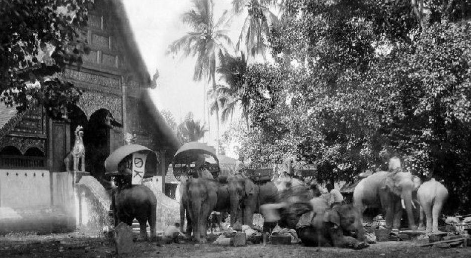 1894 Yunnan [China] merchant caravan preparing for short layover at Chiang Rai.jpg