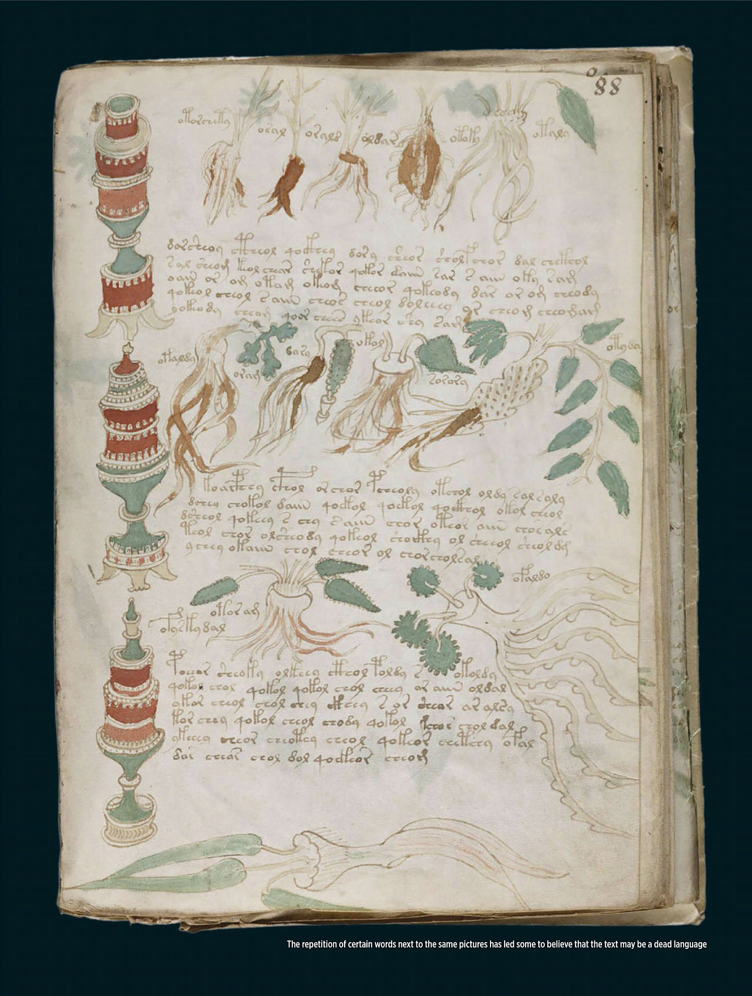 History Revealed 2020-05 Voynich Manuscript-3.jpg
