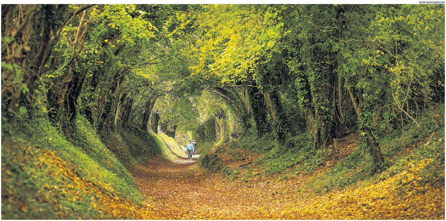 Chichester, West Sussex by Peter MacDiarmid.jpg