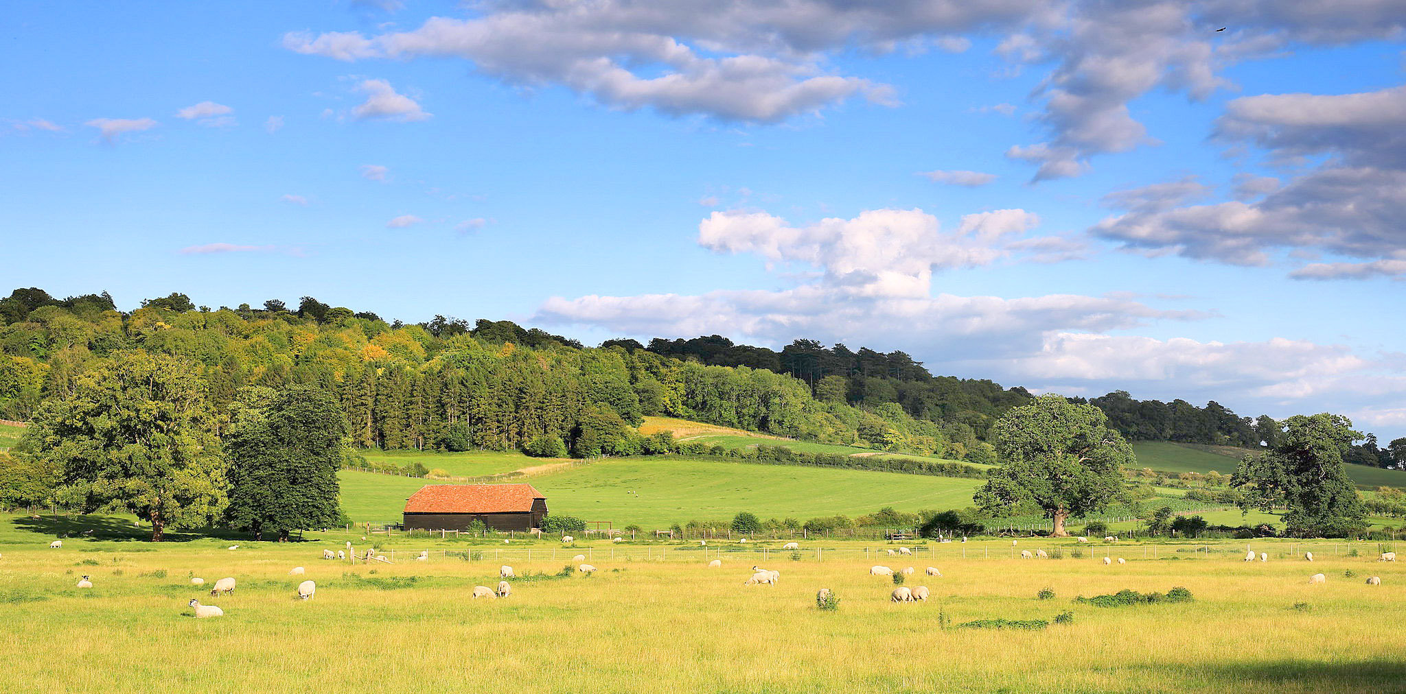 Hambleden Vally by Dongning Li.jpg